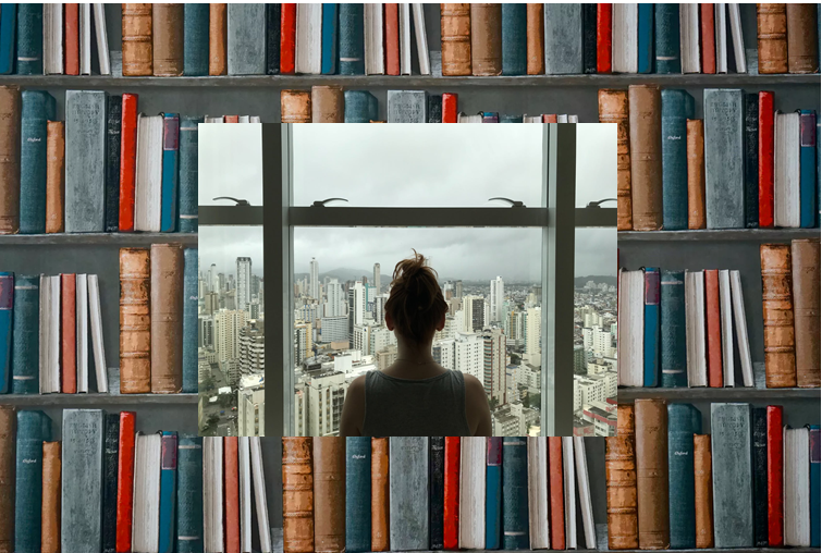 Books as Windows, Books as Mirrors: Curating Inclusive Classroom Libraries